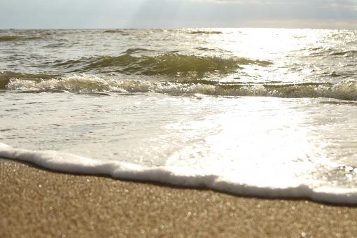 思い出の海と初めての牡蠣_b0259218_03501445.jpg