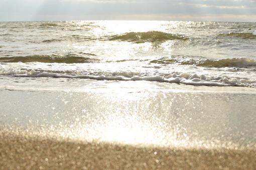 思い出の海と初めての牡蠣_b0259218_03501998.jpg