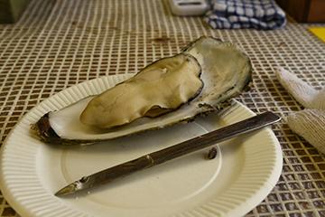 思い出の海と初めての牡蠣_b0259218_03531449.jpg