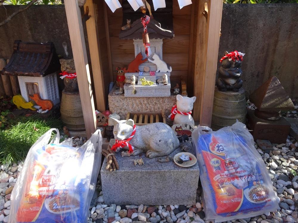 猫神社参拝ツアーが_c0111229_19020040.jpg