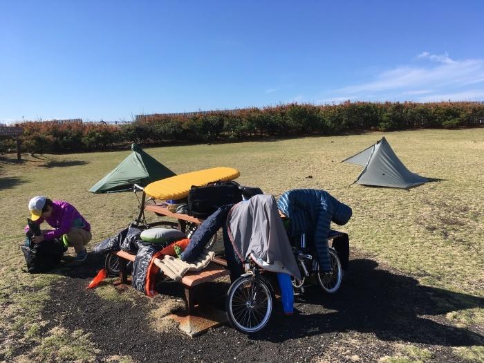 2018.11.16-17 伊豆大島へブロンプトンでバイクパッキング day2_b0219778_15032335.jpg