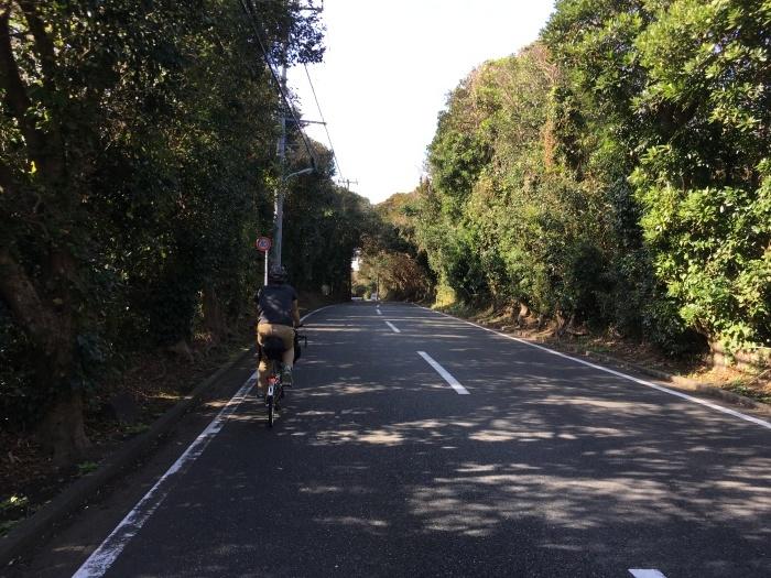 2018.11.16-17 伊豆大島へブロンプトンでバイクパッキング day2_b0219778_15034309.jpg