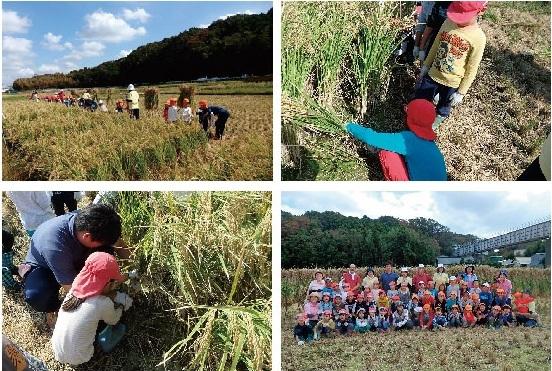 秋の収穫祭♪_b0369905_17014542.jpg