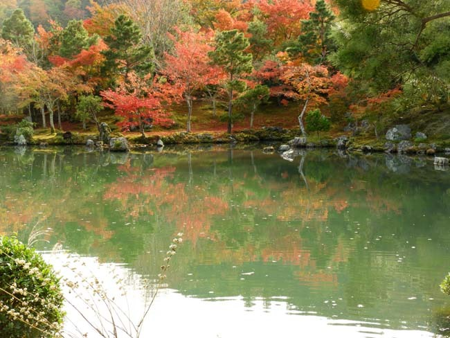 嵐山 天龍寺紅葉の盛り_e0048413_21304544.jpg
