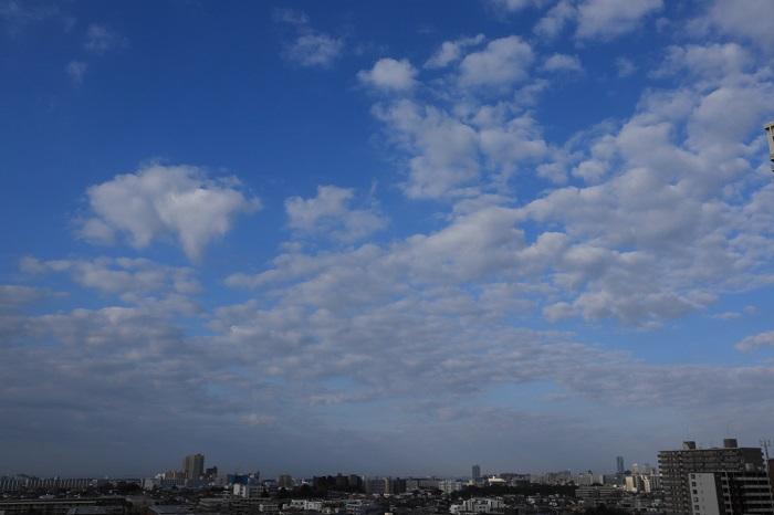 房状雲(高積雲)_b0268615_9312457.jpg