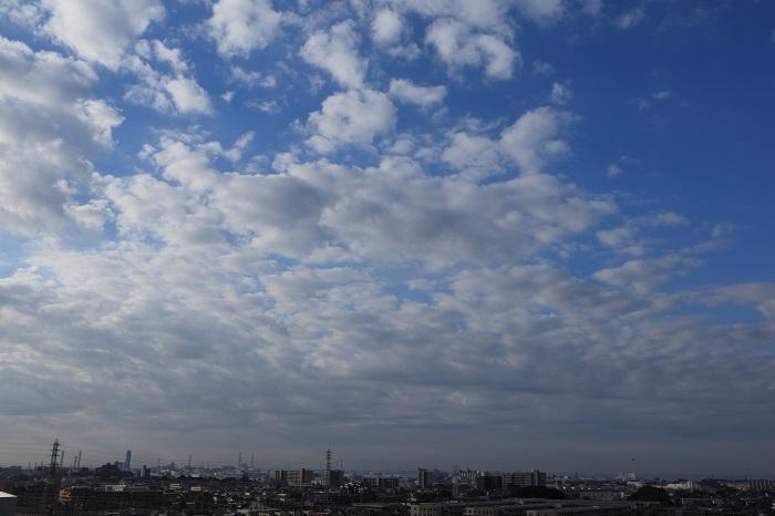 房状雲(高積雲)_b0268615_9315264.jpg