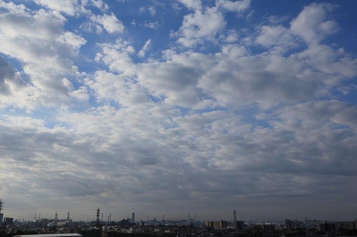 房状雲(高積雲)_b0268615_9322824.jpg