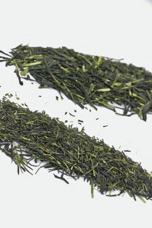 暮らしに素敵な日本茶を! 11月_b0220318_11402549.jpg