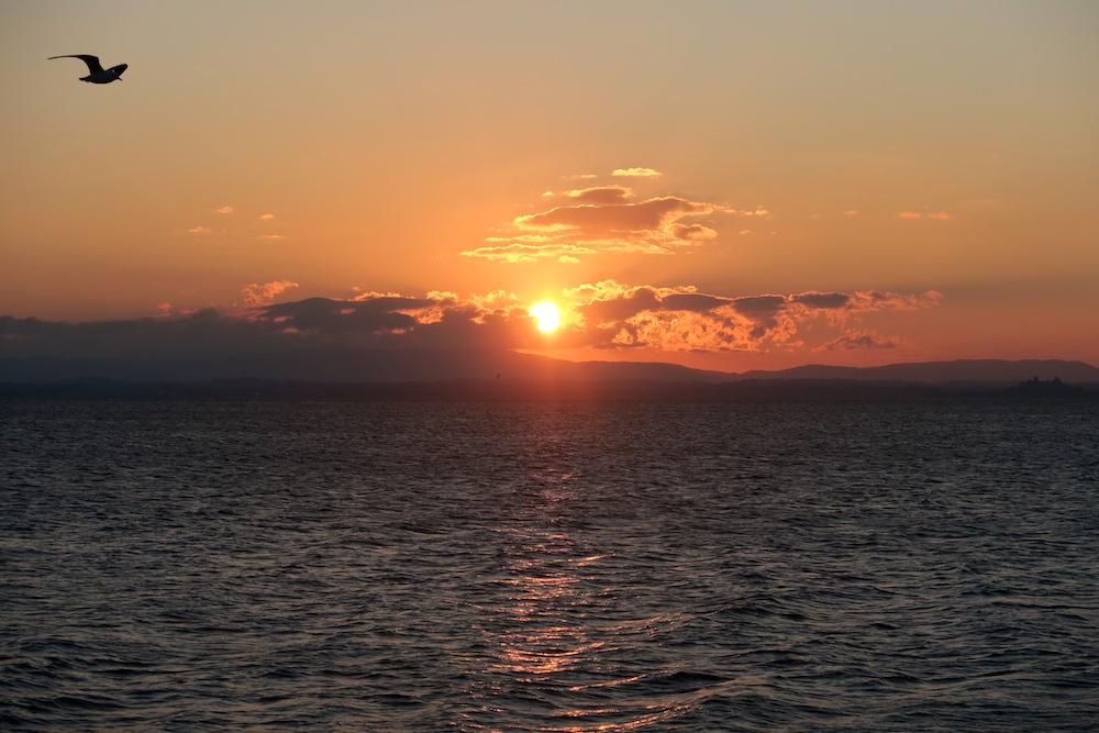 アオサギ飛びゆく夕日の湖、トラジメーノ湖_f0234936_60174.jpg