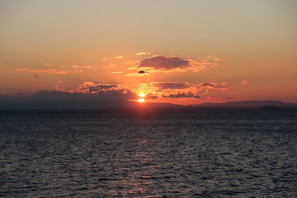 アオサギ飛びゆく夕日の湖、トラジメーノ湖_f0234936_6102655.jpg