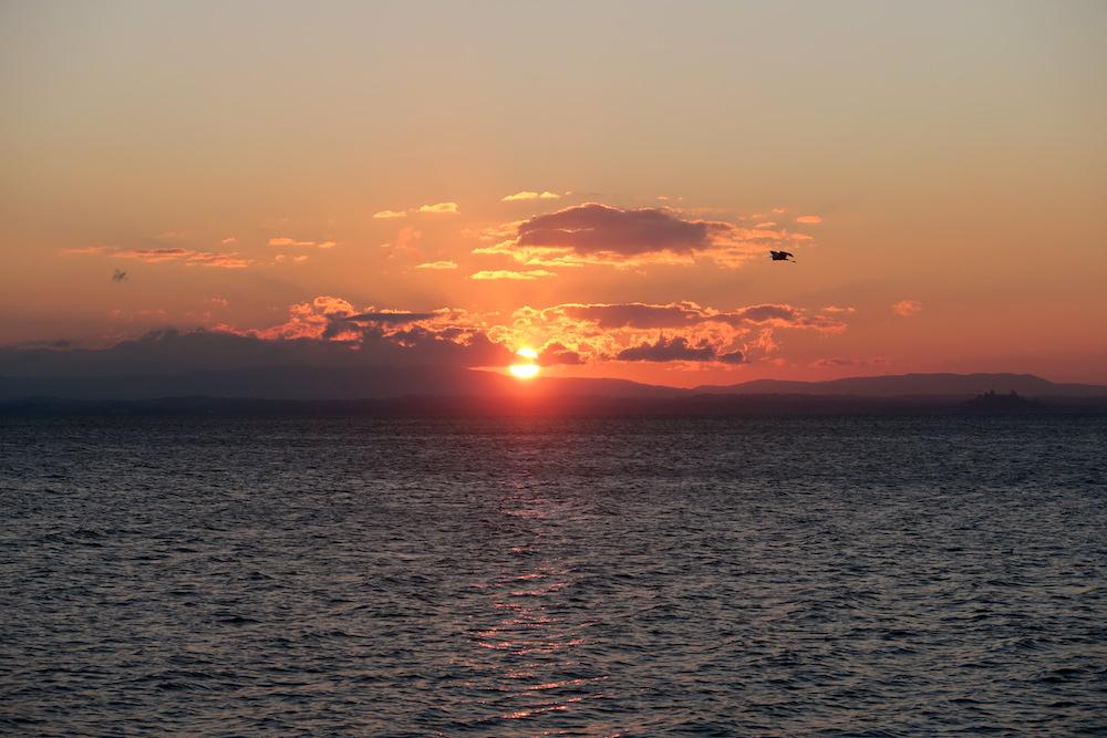 アオサギ飛びゆく夕日の湖、トラジメーノ湖_f0234936_628548.jpg