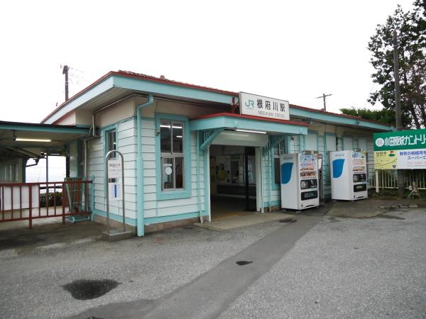根府川ハイキング_a0351368_18035335.jpg