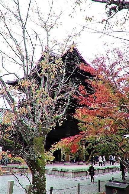 藤田八束の京都探訪@秋の京都は素晴らしい、山形有朋の別邸「無鄰菴の秋」を楽しむ_d0181492_22320166.jpg