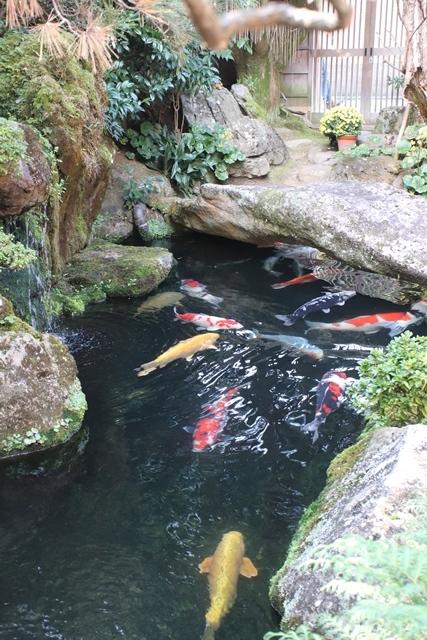 藤田八束の京都探訪@秋の京都は素晴らしい、山形有朋の別邸「無鄰菴の秋」を楽しむ_d0181492_22442770.jpg