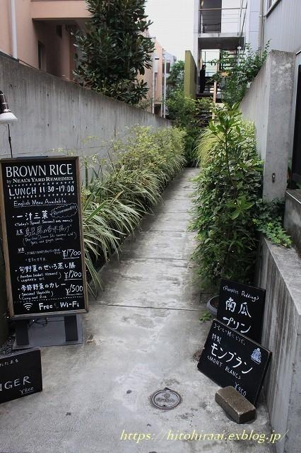 BROWN RICE @表参道_f0374092_20482712.jpg