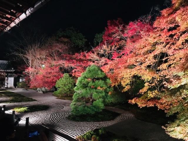 鞍馬寺、宇宙のパワースポット。永観堂紅葉を見る。_a0050302_01332519.jpg