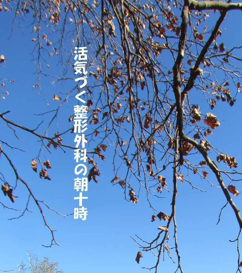 f0117041_05135045.jpg