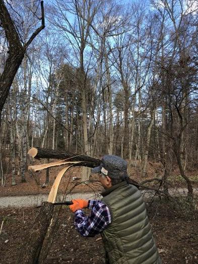 ノリウツギの伐採作業_c0341450_15400814.jpg