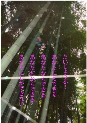 e0078900_14300172.jpg