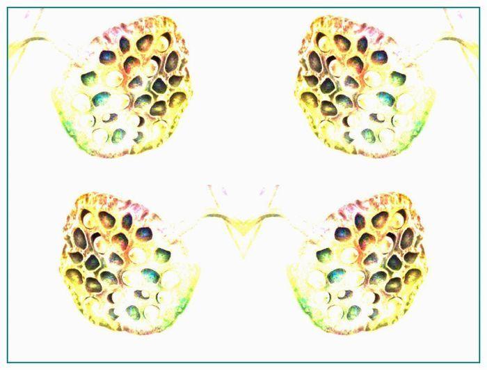 b0130112_19530997.jpg