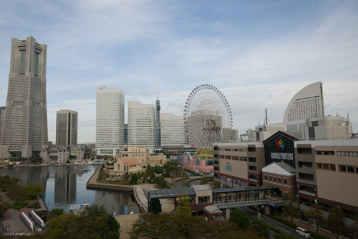 日本矯正歯科学会 商社展示_d0192712_14133996.jpg