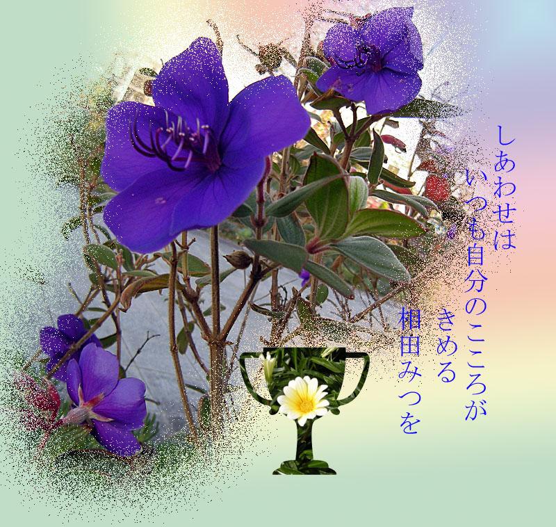 f0047824_14221857.jpg