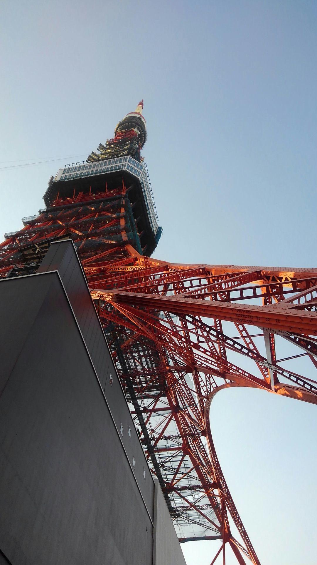 高い建物ツアーファイナルはやはり・・・_e0120837_22240331.jpg