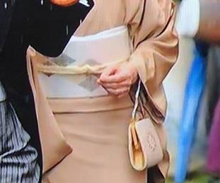 平成最後の園遊会・皇后陛下の螺鈿の帯。_f0181251_1714735.jpg
