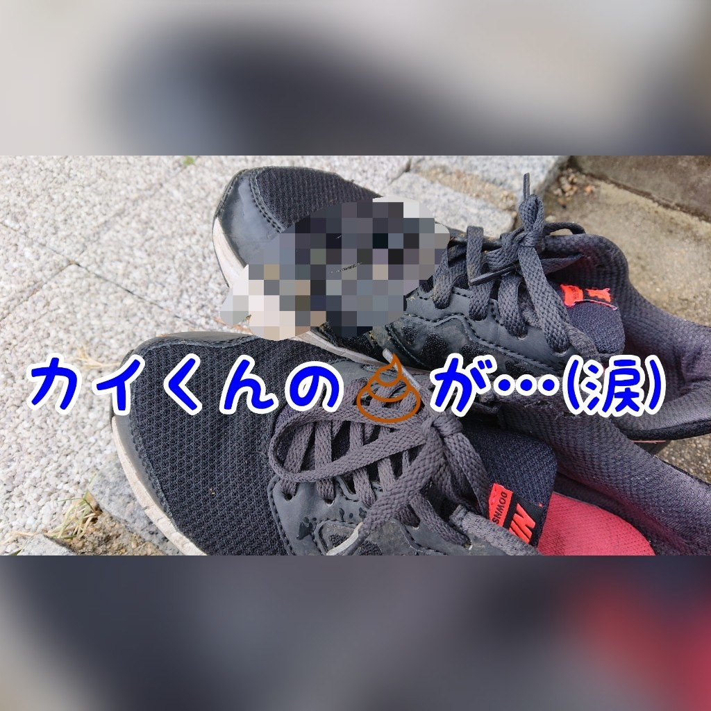 c0343364_22392047.jpg