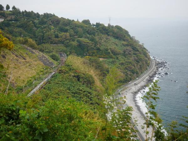 江之浦漁港とみかん畑_a0351368_23081095.jpg