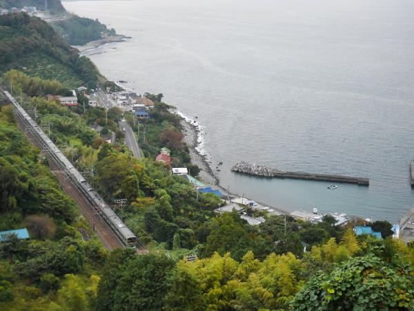 江之浦漁港とみかん畑_a0351368_23083576.jpg