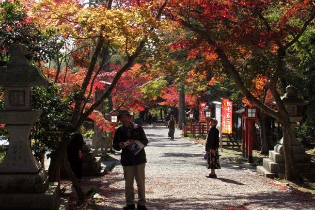 大原野神社 盛り_e0048413_21473686.jpg
