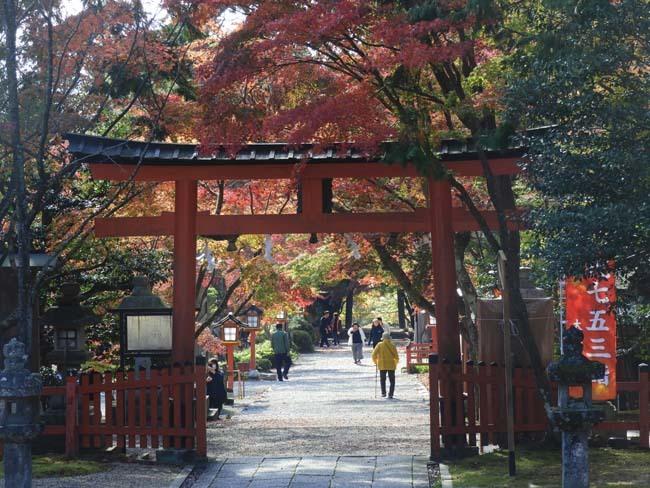大原野神社 盛り_e0048413_21474084.jpg
