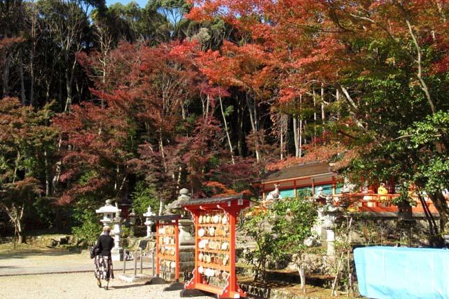 大原野神社 盛り_e0048413_21474306.jpg