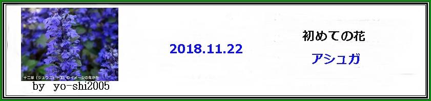 e0033229_18351173.jpg