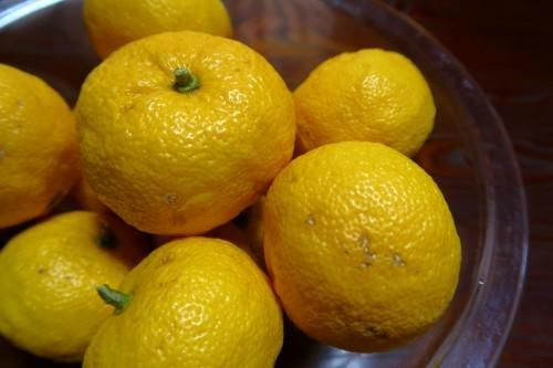 柚子茶にもなる柚子ジャム_d0336530_22335154.jpg