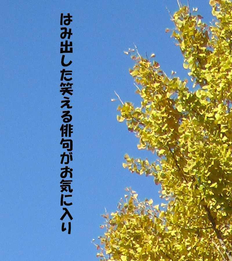 f0117041_18010156.jpg