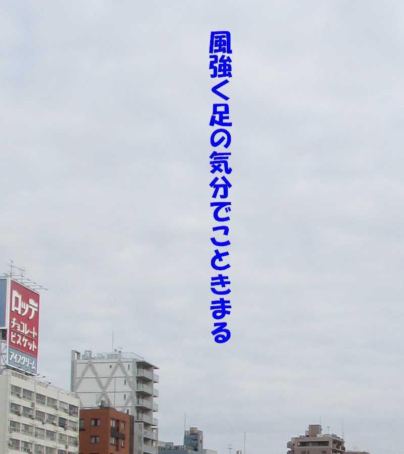 f0117041_18181549.jpg