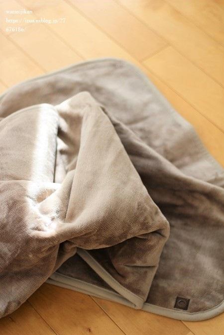 無印の羽織れる電気ひざ掛けとアドベントの用意_e0214646_19190042.jpg