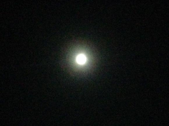 月・季節のアロマ活用***_e0290872_20551799.jpg