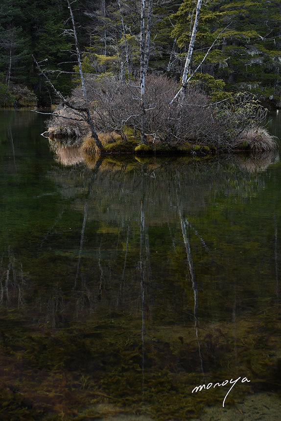晩秋の明神池_c0085877_04101402.jpg