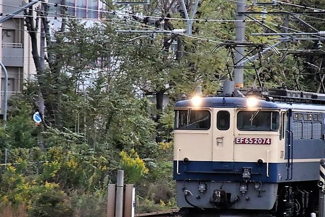 藤田八束の鉄道写真@貨物列車を追いかけて写真を撮りました・・・貨物列車を激写_d0181492_10280018.jpg