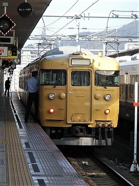 藤田八束の鉄道写真@播但線と姫路城、姫路駅を通過するかっこいい貨物列車は桃太郎・・・世界遺産姫路城と鉄道_d0181492_21444932.jpg