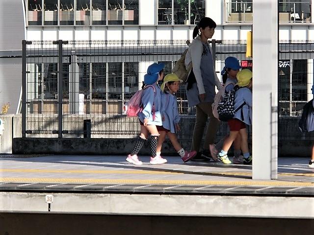 藤田八束の鉄道写真@播但線と姫路城、姫路駅を通過するかっこいい貨物列車は桃太郎・・・世界遺産姫路城と鉄道_d0181492_23304521.jpg