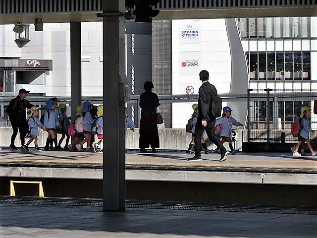 藤田八束の鉄道写真@播但線と姫路城、姫路駅を通過するかっこいい貨物列車は桃太郎・・・世界遺産姫路城と鉄道_d0181492_23310063.jpg