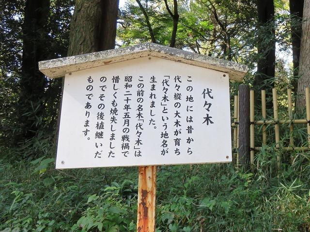 「代々木」の由来となった樅の木  (原宿散歩⑤) _c0187004_14493287.jpg