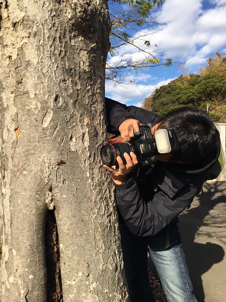 横浜西部の田んぼ(2018年11月)_b0348205_22094471.jpg