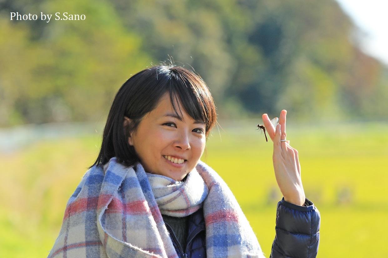 横浜西部の田んぼ(2018年11月)_b0348205_22101678.jpg