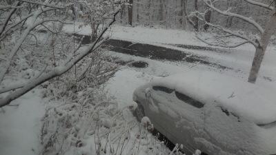 11月23日 金曜日  1度   雪_f0210811_08272620.jpg