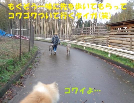 f0121712_00054814.jpg